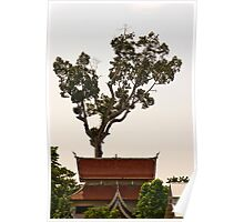 Around Chedi Luang temple Poster