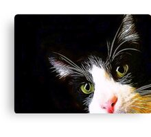 Are you still there? Canvas Print