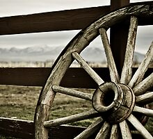 Wagon Wheel by Teri Argo