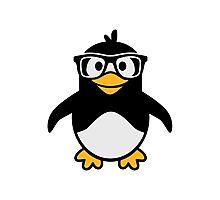 Penguin glasses Photographic Print