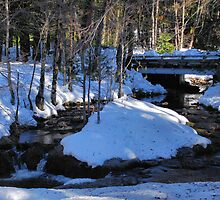 Bear River Bridge in snow by Lenny La Rue, IPA