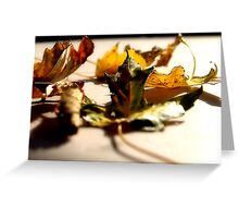 "Fall Colors ""Change"" Greeting Card"