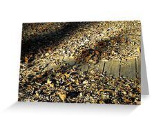 "Fall Colors ""The Floor"" Greeting Card"