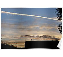 A bird outlined against the setting sky at Dover Castle Poster