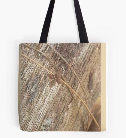 Nature's Ribbon and Bow Tote Bag