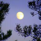 Moon Magic by HELUA