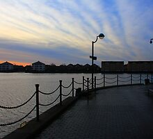 Morning Light at Millwall Docks by Dave Law