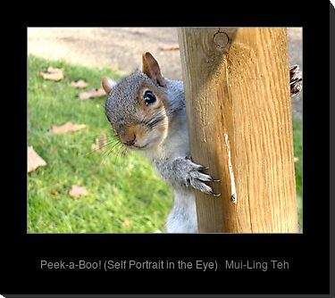 """Peek-a-Boo!"" by Mui-Ling Teh"
