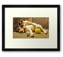 Happy Dreams Framed Print