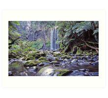 Hopetoun Falls Otway Ranges - Vic Art Print