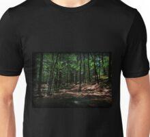 Trail Of Needles Unisex T-Shirt
