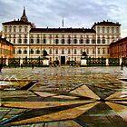 Palazzo Reale, Torino, Italy by Andrea Rapisarda