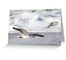 Skimming Greeting Card