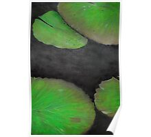 Lily Pads, Series Poster
