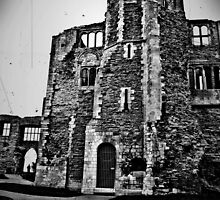 Newark Castle Grounds by calam19