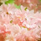 Cotton Candy Pink Azaleas by Lois  Bryan