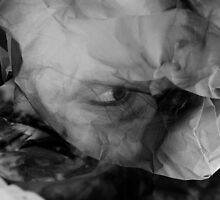 The Night of Immortality  by Danica Radman