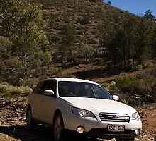 Outback in the outback by Des Berwick