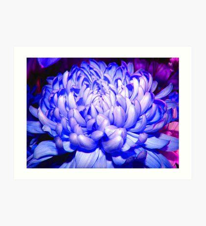 Blue Lullabye Art Print