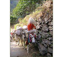 Himalayan Hikers Photographic Print