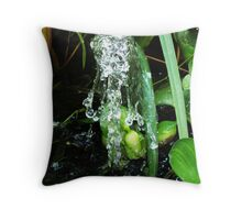 Wet, Wet Water Throw Pillow