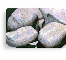 Big Boulders Canvas Print