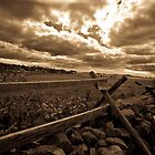 Fenceline in Sepia by manchesterjohn