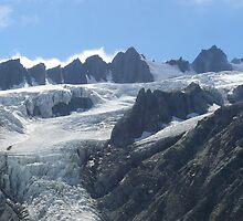 Fox Glacier, South Island of New Zealand by Flavio  Alvarenga