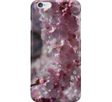 Early Spring Blossoms iPhone Case/Skin