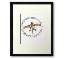 Sinornithosaurus Millenii NGMC-91 Framed Print
