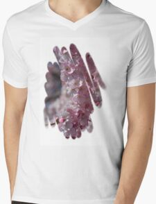 Early Spring Blossoms Mens V-Neck T-Shirt