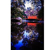 Welcome to Oriental Fields Photographic Print