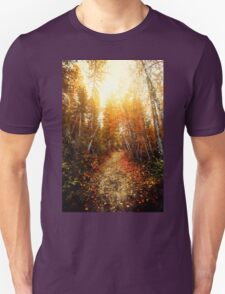 Red Forest, Washington in November T-Shirt