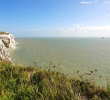 """UK: """"White Cliffs of Dover 2"""", Kent by Kelly Sutherland"""