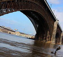 Flood 2008 by J.  Roberts