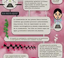 La máxima eficiencia en vaporización by Felicien Duranseau