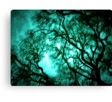 Twisting the Night Away  Canvas Print