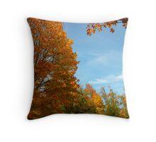 maple colours Throw Pillow
