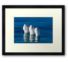 Pillar Pops Framed Print