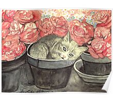 KITTY - CUTE BABY-CAT IN FLOWERPOT WITH PINK ROSES  Poster