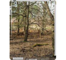 Winter Woodland iPad Case/Skin