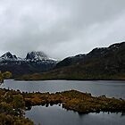 Late Snow, Dove Lake and Cradle Mountain - Tasmania by Ruth Durose