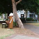 Piano In The Park by C J Lewis