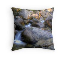 Meander River Throw Pillow