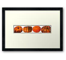 Pumpkins, A Colour Study Framed Print