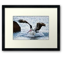Successful Landing Framed Print