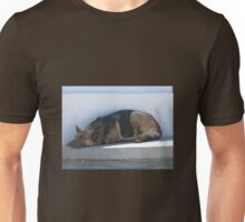 SIESTA TIME FOR THIS LITTLE DOGGY Unisex T-Shirt