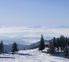 Above the Clouds by Magda Vacariu