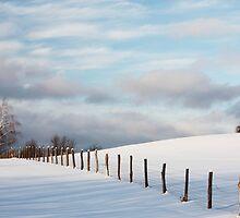 Quiet Winter by Mystic Raven Art