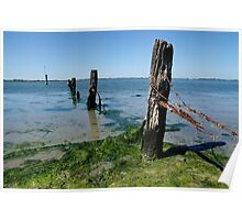 Coorong fence. Poster